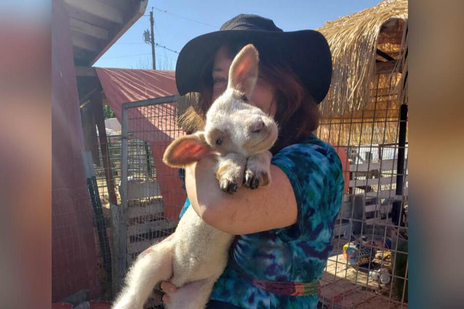 Tier-Retter-Farm in Not: Hier finden kranke Tiere ein Heim - bis jetzt