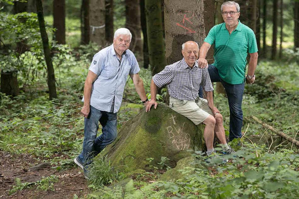 Roland Trojovsky (75, links), Dietmar Ganze (73) und Erhard Dietmar Lenz (67) könnten ruhiger schlafen, würde das Rätsel um den Stein endlich gelöst.