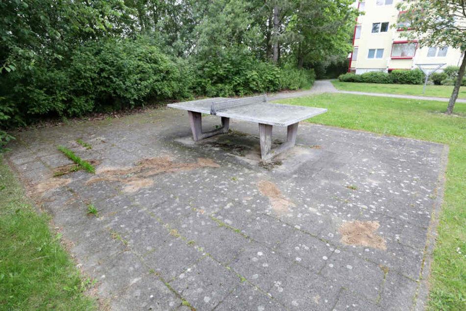 Unweit der Fundstelle wurde Blut nahe einer Tischtennisplatte gefunden, das nun mit Sand abgedeckt ist.