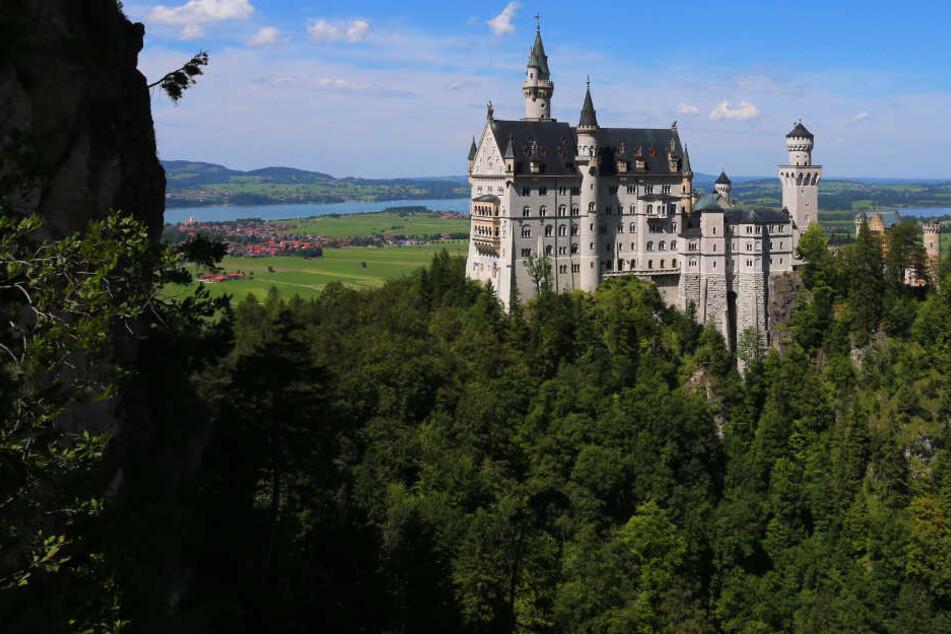 Im Sommer besuchen über 6000 Menschen am Tag das Schloss Neuschwanstein.