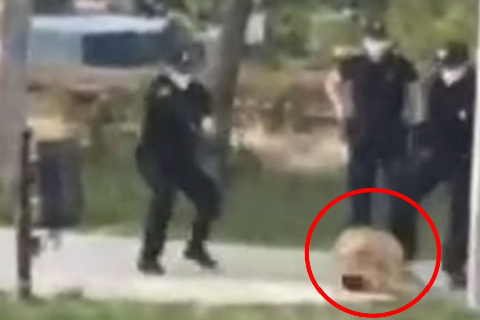 Die Polizisten kannten keine Gnade, schossen den Hund nieder.
