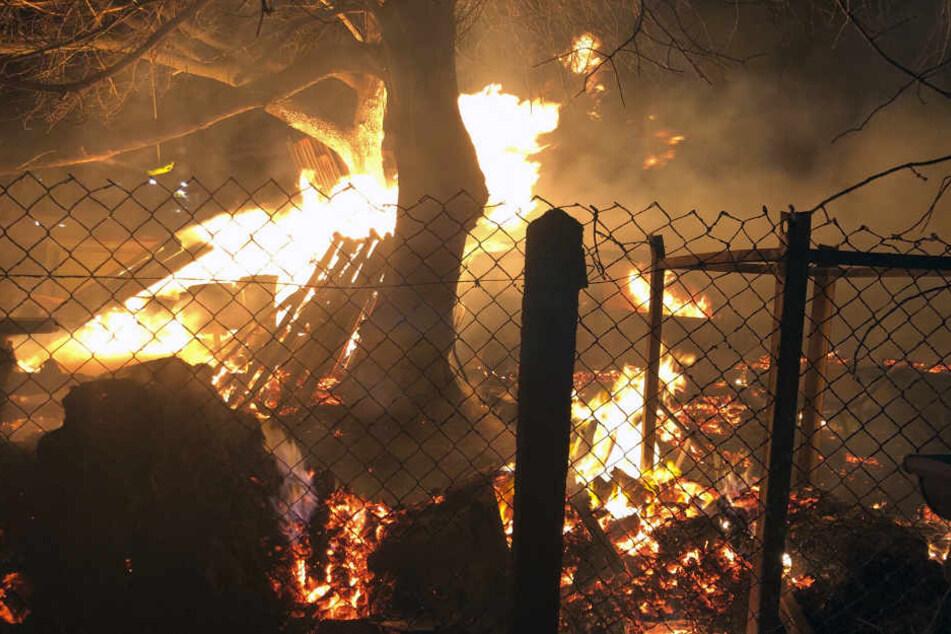 In Mildenau stand ein Schuppen und gelagertes Holz in Flammen.