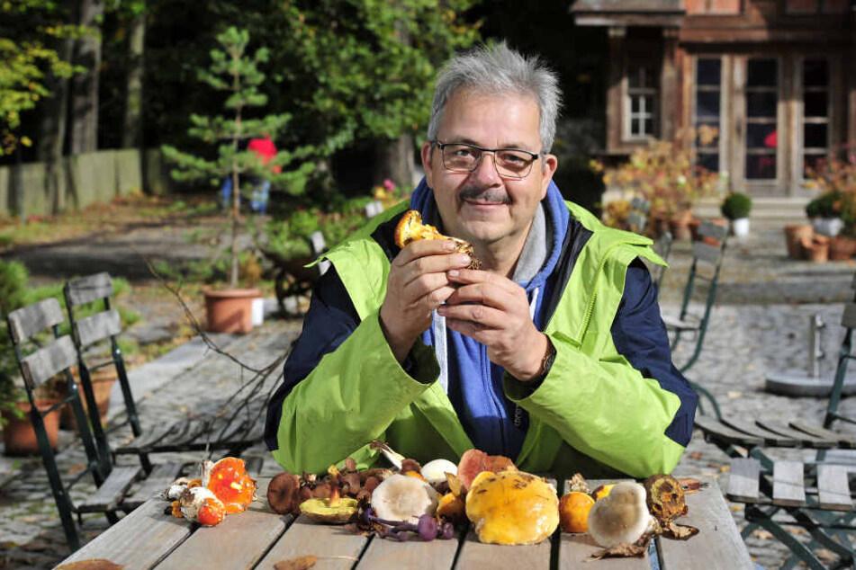Pilzexperte Peter Welt (58) warnt vor Giftpilzen, die essbaren Pilzen zum Verwechseln ähnlich sehen.