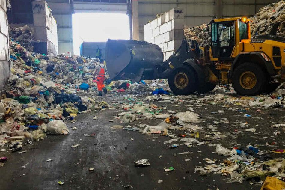 Der gesamte Müll landet zunächst in einer riesigen Halle.