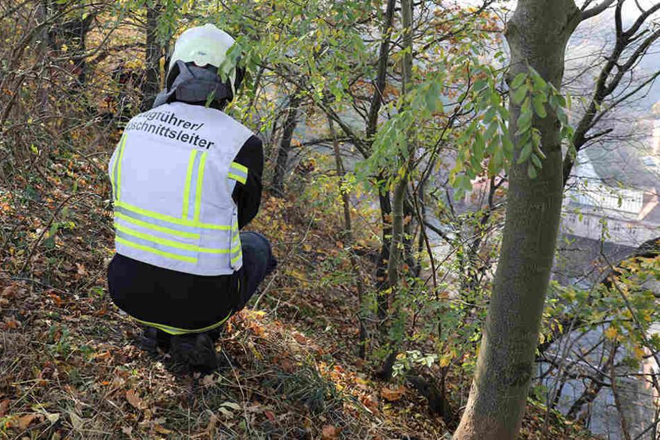 Am Hohen Stein suchten Rettungskräfte nach einem verschwundenen Hund.