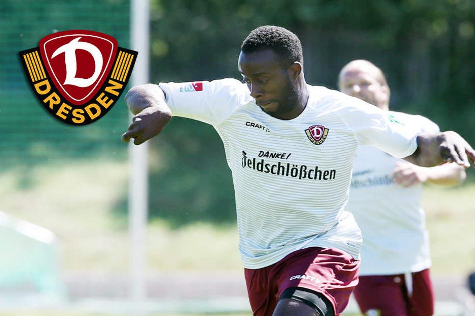 Dynamo-Kicker Berko froh über sein Praktikum als Verteidiger