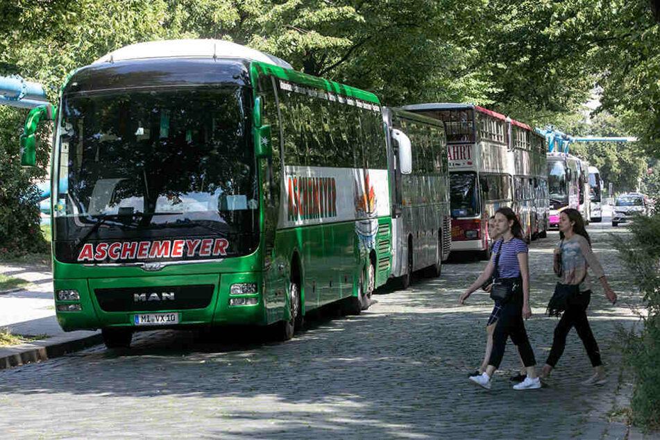 Nur bis Mittwoch konnten Busse noch am Zwingerteich parken.