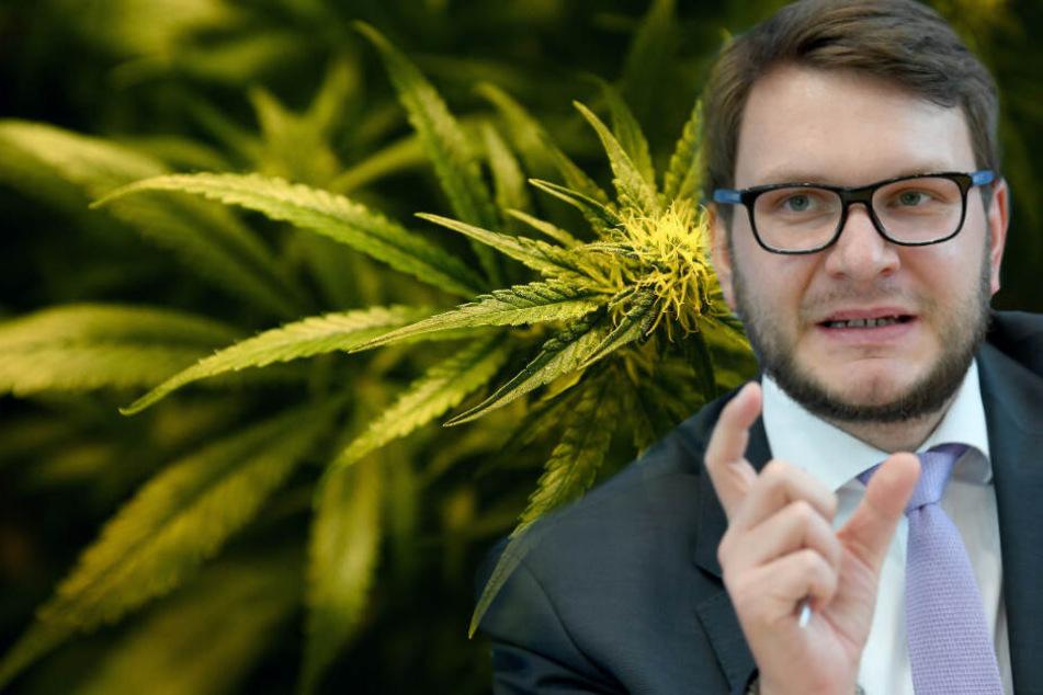 CDU-Innenpolitiker kann sich Cannabis-Freigabe für Eigenbedarf vorstellen
