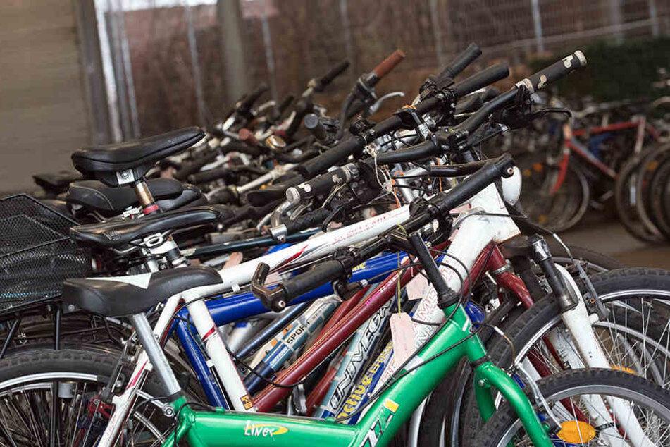 Auch unzählige Fahrräder werden versteigert.