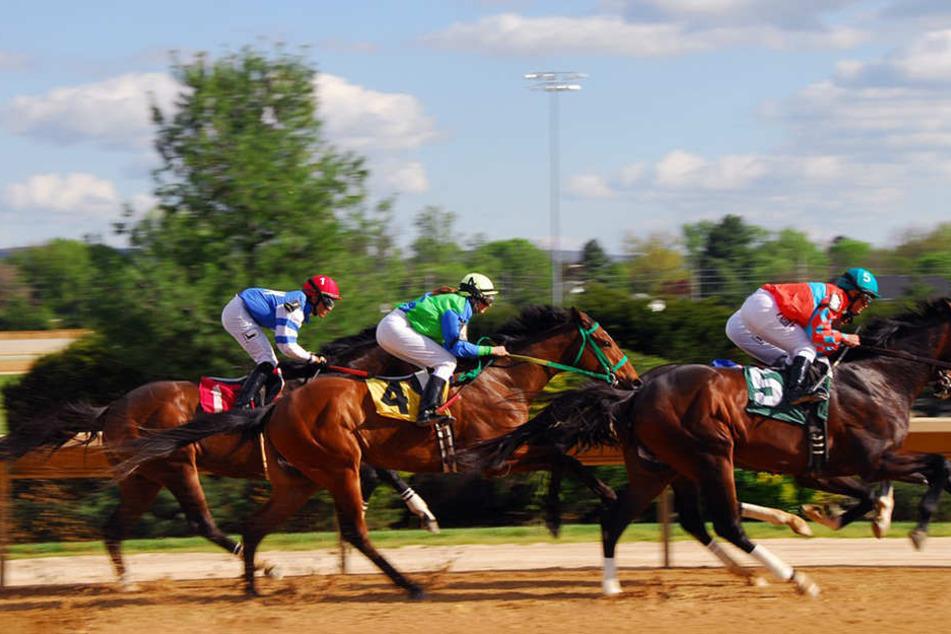 Ein großer Teil der Veranstaltungskosten im Pferderennsport wird durch die Wett-Teilnehmer und die Besucher finanziert.