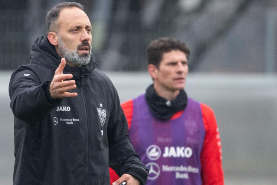 Hat bei seinem ersten Training viel zu gestikulieren: VfB-Coach Pellegrino Matarazzo. Im Hintergrund ist Mario Gomez zu sehen.