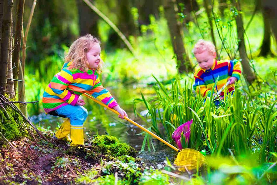 Ganzjährig draußen spielen und lernen ist das Ziel eines Waldkindergartens.