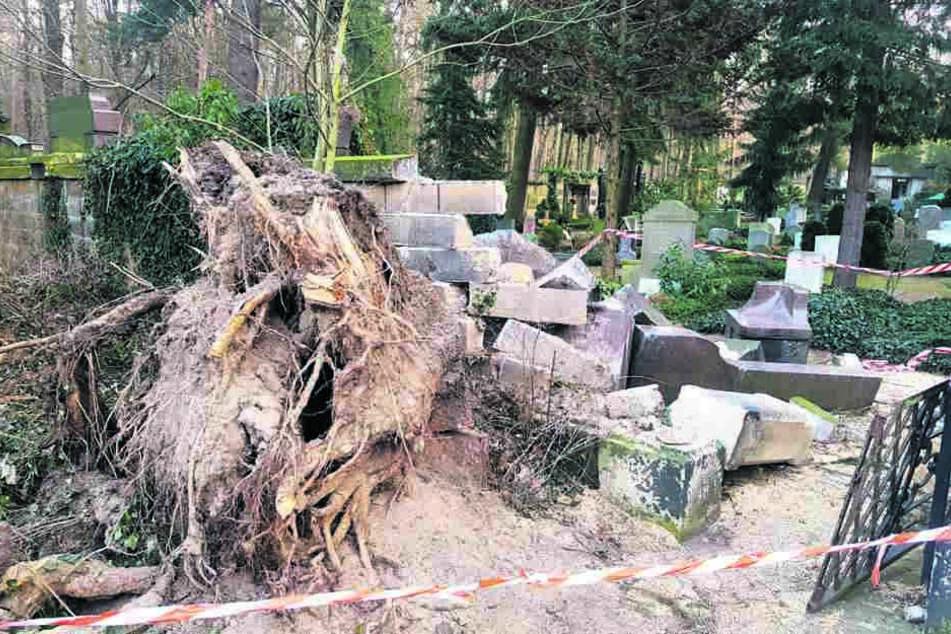 Die Wucht des entwurzelten Baumes riss auch Teile der Friedhofsmauer mit ein. Die Kirchgemeinde schätzt den gesamten Sturmschaden auf 15.000 Euro.