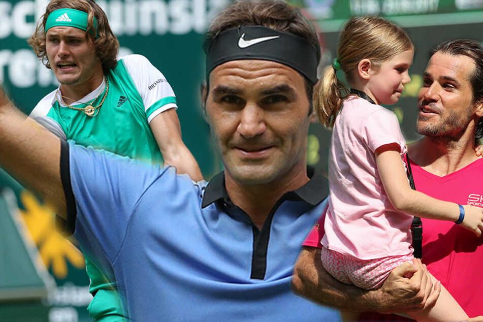 Alexander Zverev (20,li.) und Roger Federer (35,mi.) geht es in die nächste Runde. Für Tommy Haas (38,re.) ist das Turnier schon beendet.