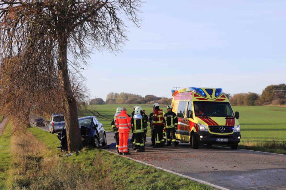 Die Rettungskräfte konnten den Fahrer nicht mehr retten.