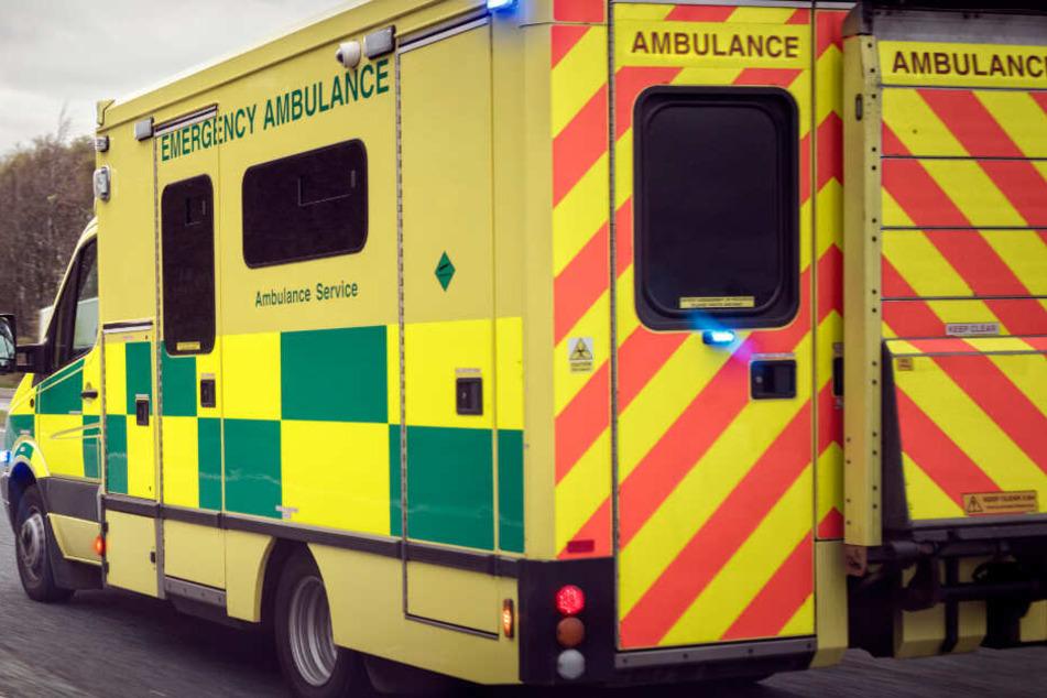 Alte Frau (74) liegt stundenlang schwer verletzt auf einer Straße: Der Grund ist traurig