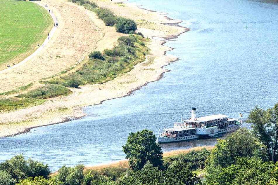 Vor allem das extreme Niedrigwasser der Elbe brachte die Weiße Flotte in große Not.