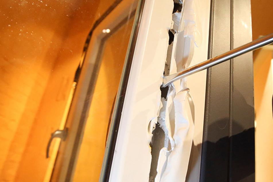 In Schönau wurde ein mutmaßlicher Einbrecher beobachtet.