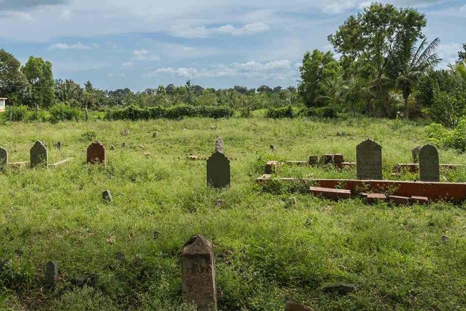 Ein grausiges Bild bot sich Angehörigen auf dem Friedhof (Symbolbild).