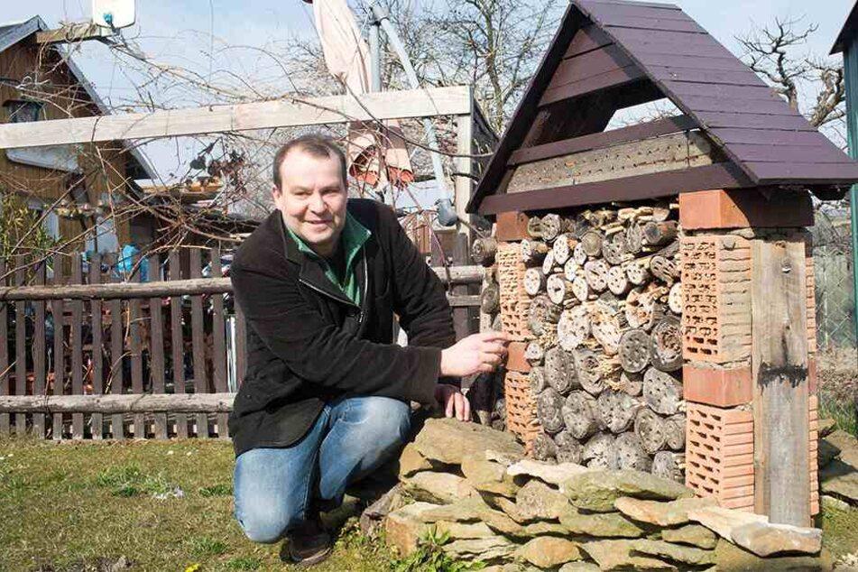 Tino Lorz (43), Vorsitzender des Dresdner Imkervereins, möchte varroa-resistente Bienen züchten.