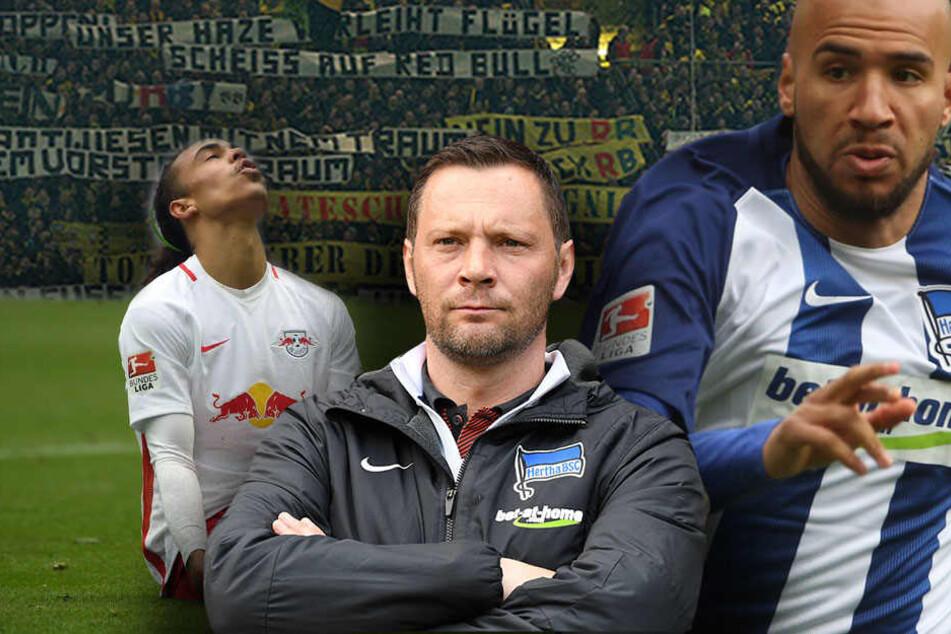 Pal Dardai (Mitte) konzentriert sich vor dem Spiel nur auf das Sportliche und da wird für ihn das Spiel gegen Leipzig zur Mentalitätsfrage.