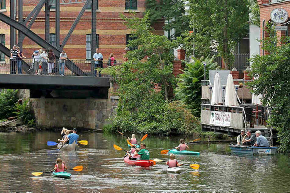 Kinder paddeln in Kanus auf der Weißen Elster. Im Sommer herrscht auf dem Wasser Hochbetrieb.