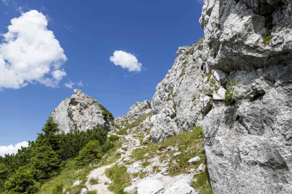 Ein Bergtour in den Alpen endete für einen 32-Jährigen tödlich. (Symbolbild)