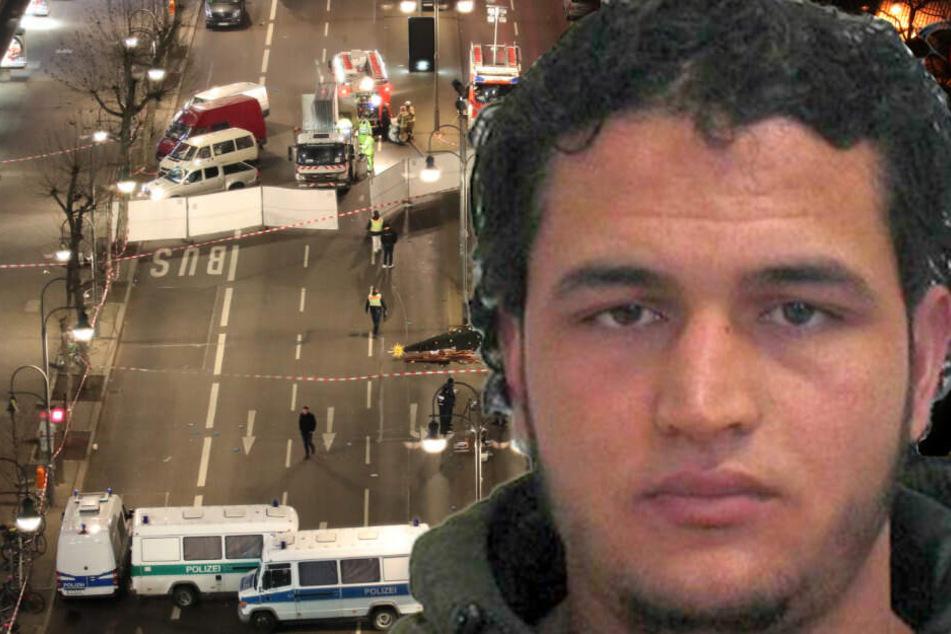 """BKA stellte Amris Terror-Absichten infrage: """"Hochgradig unprofessionell"""""""
