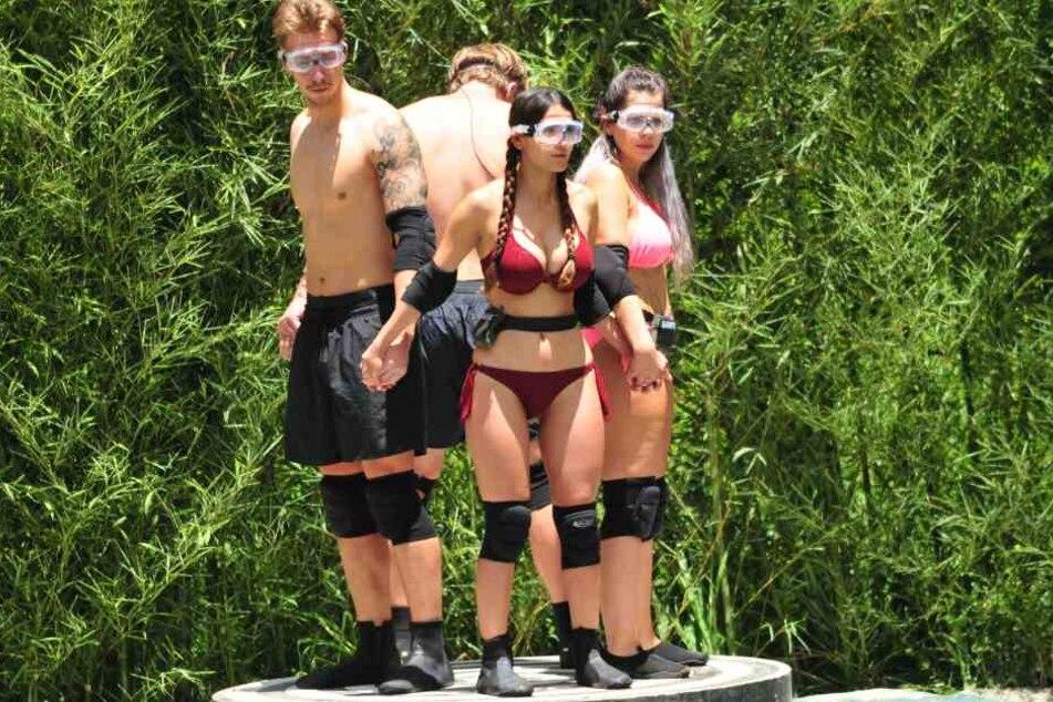 Für David, Ansgar, Kattia und Jenny ging es an Tag 8 zur Dschungel-Prüfung.