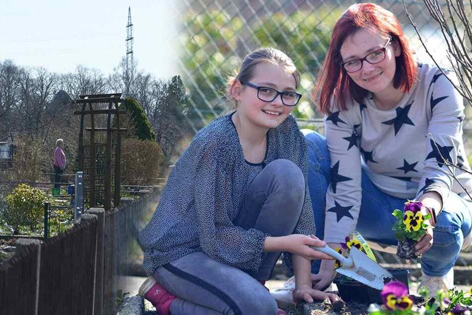 Chemnitz: 20 Grad und Sonne satt: Chemnitzer Kleingärtner eröffnen die Saison