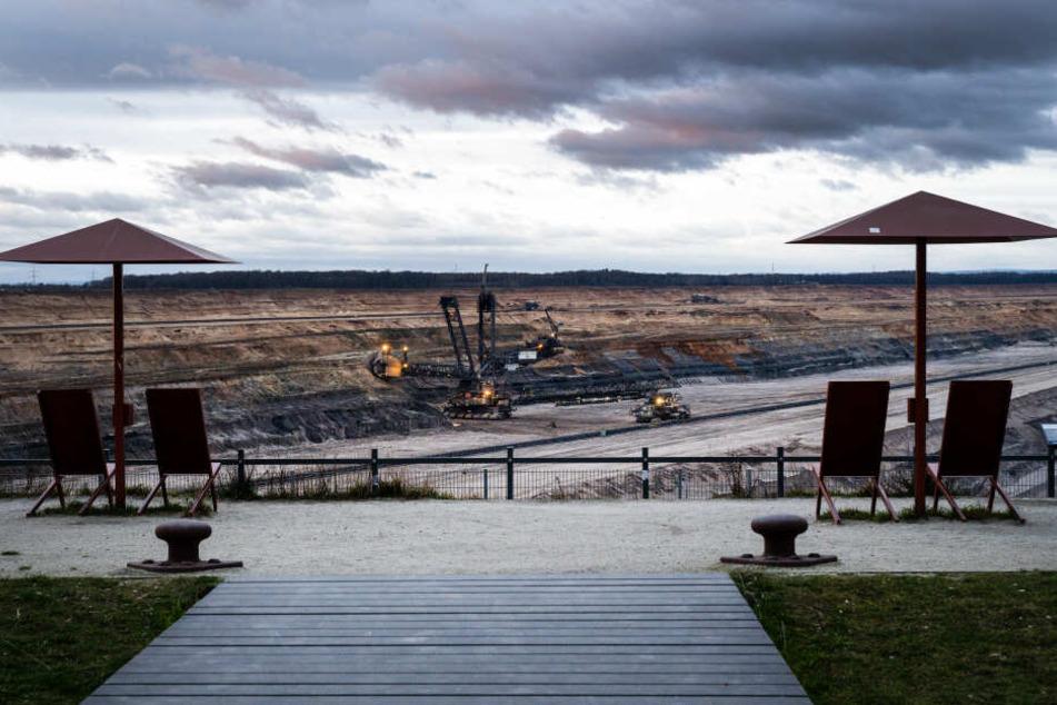 Im Tagebau Hambach soll bis 2029 Kohle abgebaut werden, der Hambacher Forst bleibt jedoch erhalten.
