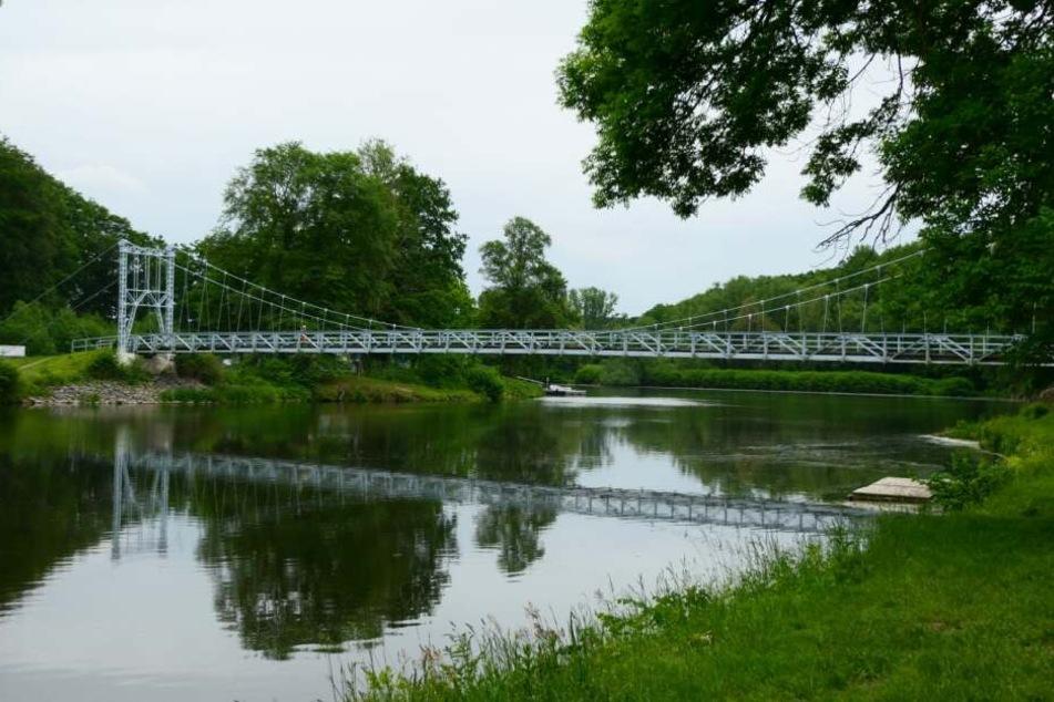 Auf dieser Hängebrücke über die Mulde in Grimma hat sich eine Gruppe mit Traktor und Anhänger mit Entgegenkommenden angelegt.