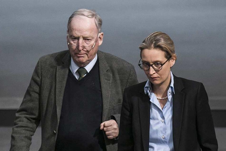 Verbal-Attacken z.B. der AfD-Bosse Alexander Gauland und Alice Weidel kontert Habeck betont sachlich.