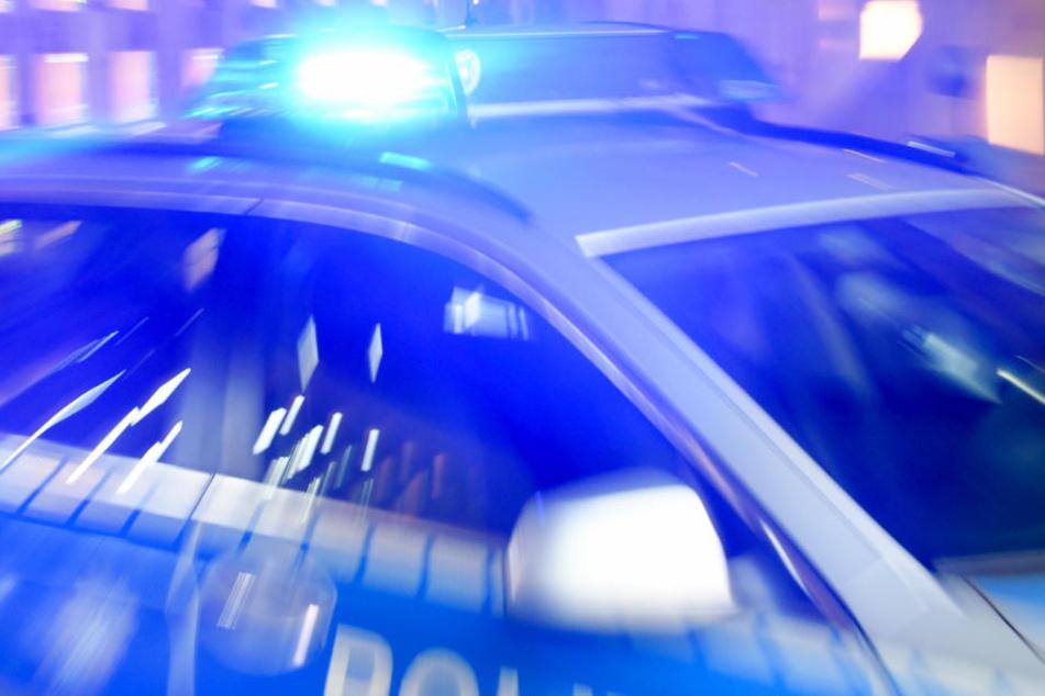 Die Polizei musste bei dem Einsatz zu Pfefferspray und Hunden greifen. (Symbolfoto)