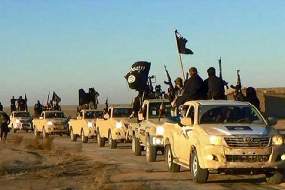 Fahrzeugkonvoi mit Mitgliedern der Terrormiliz Islamischer Staat (IS) auf dem Weg von Al-Rakka (Syrien) in den Irak (undatiert).