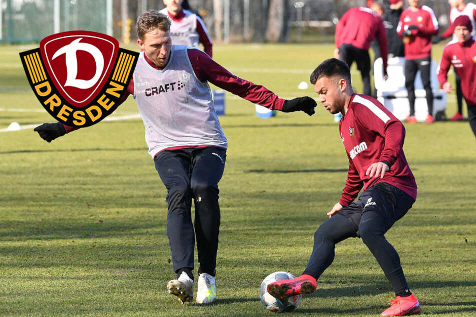 Dynamo steigt Mittwoch wieder ins Training ein