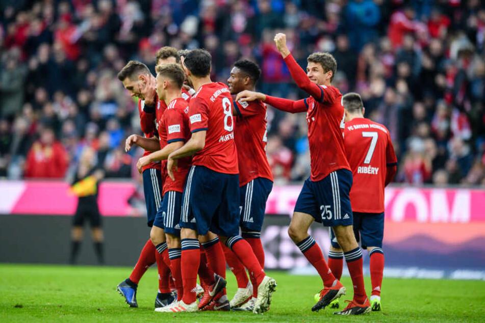 Torschütze Niklas Süle (l) wird von den Spielern vom FC Bayern München in der Partie gegen Fortuna Düsseldorf gefeiert. (Archivbild)