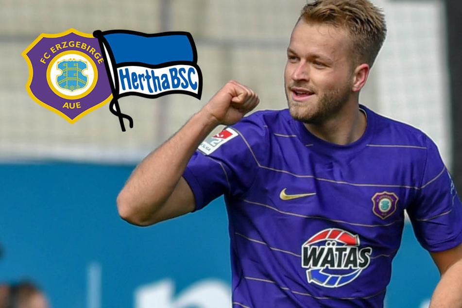 Überraschende Absage an 96: Warum entschied sich Pascal Köpke für Hertha BSC?