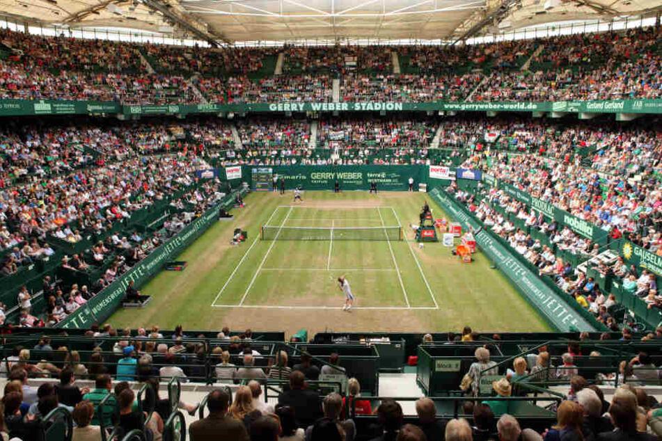 Jedes Jahr wird das Gerry Weber Stadion in Halle (Westfalen) zum Tennis-Court.