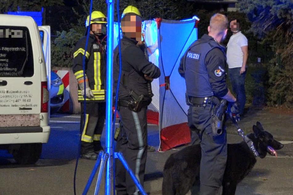 Auch ein Polizeihund kam zum Ansatz, um den Mob in Schach zu halten.