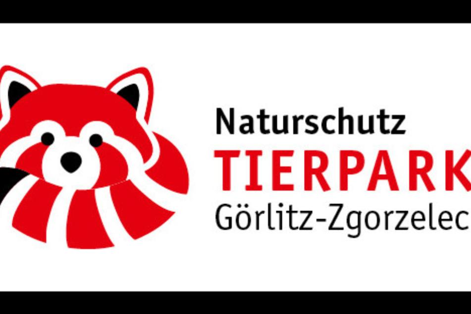 Im Naturschutz-Tierpark Görlitz-Zgorzelec gibt es am Sonntag viel zu erleben.