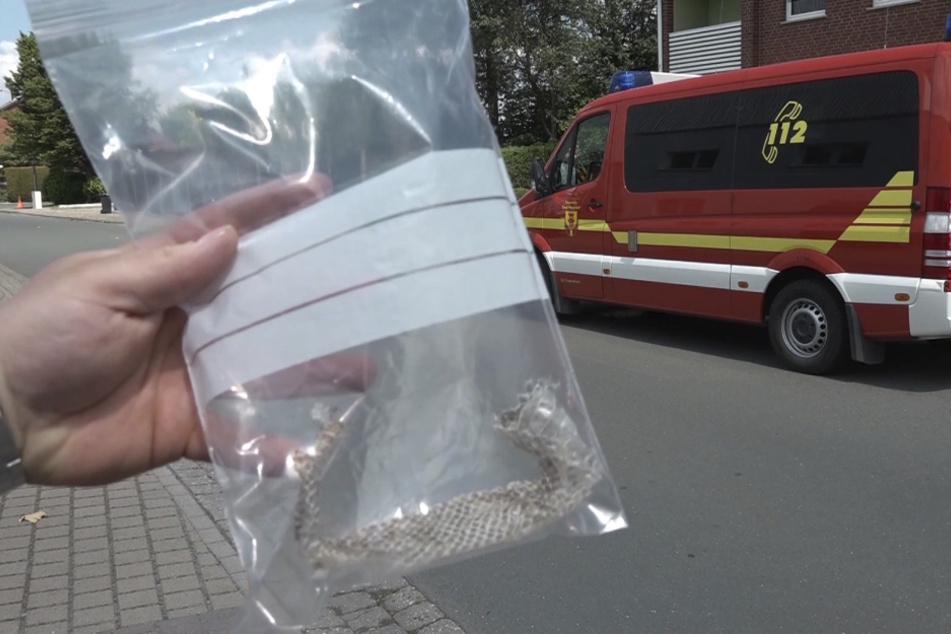 Eine Person hält Schlangenhaut in einer Plastiktüte in der Hand.