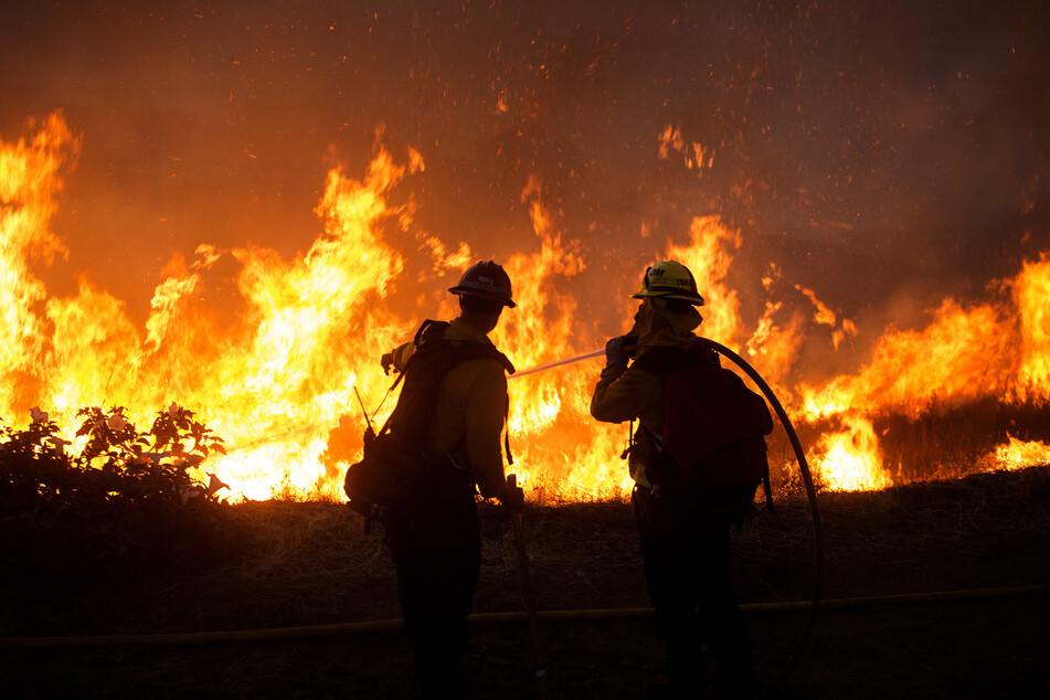 Feuerwehrleute bekämpfen das sogenannte Apple-Feuer.