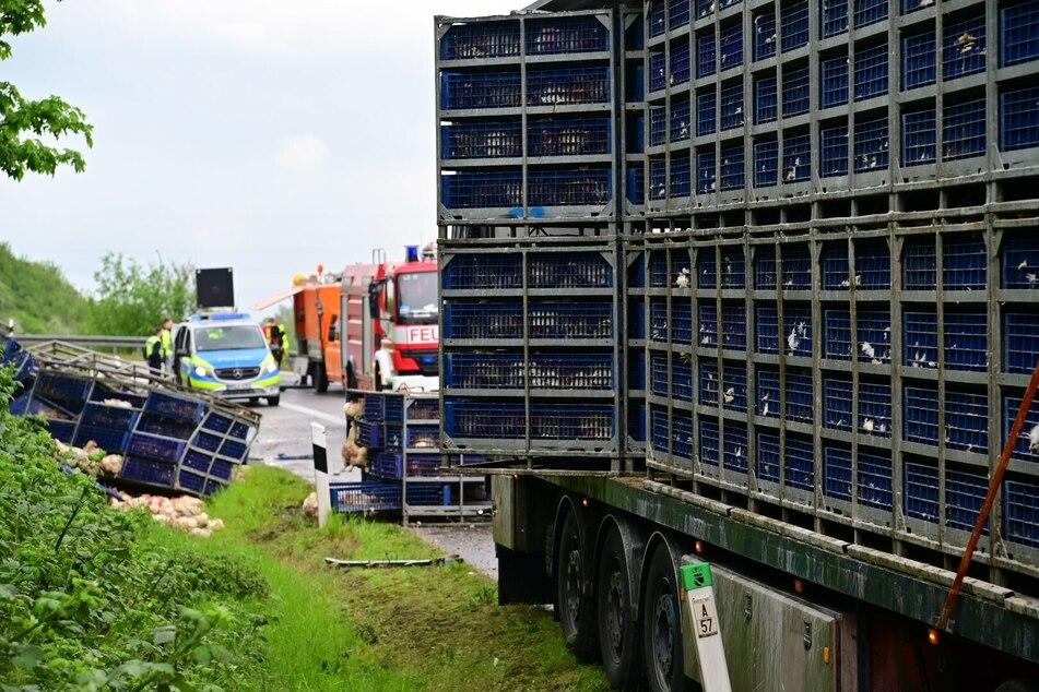Unfall A46: Gegacker auf der Autobahn: Tiertransporter verliert mehr als 1000 Hühner