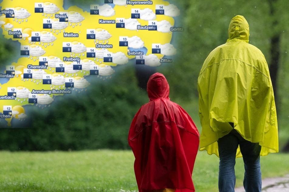 Schmuddelwetter in Sachsen: Fällt der Mai in diesem Jahr komplett ins Wasser?