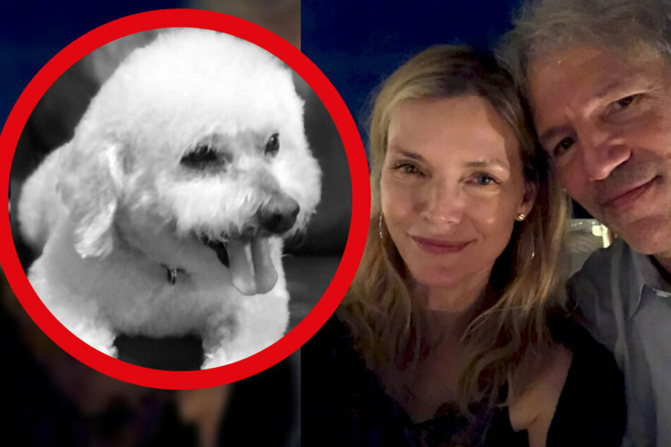 Riesige Trauer bei Michelle Pfeiffer: Ihr Hund ist tot!
