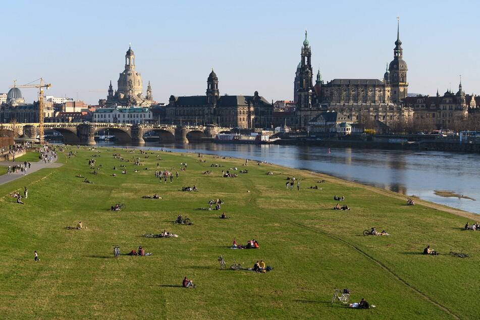 Das sonnige Wetter lockt viele Dresdner an die Elbe. Doch die Zahl der Neuinfektionen steigt an.