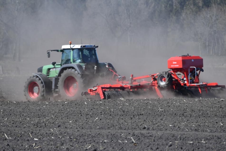 Trockenheit im Südwesten: Die Bauern sorgen sich