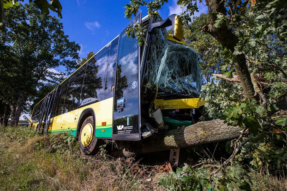Stark beschädigt steht der Bus nach dem Unfall mit mehreren verletzten Grundschülern im Straßengraben.