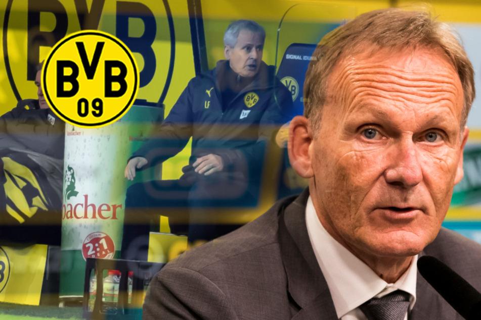 """BVB-Boss Watzke über Favre und mögliche Nachfolger: """"verschiedene Optionen"""""""